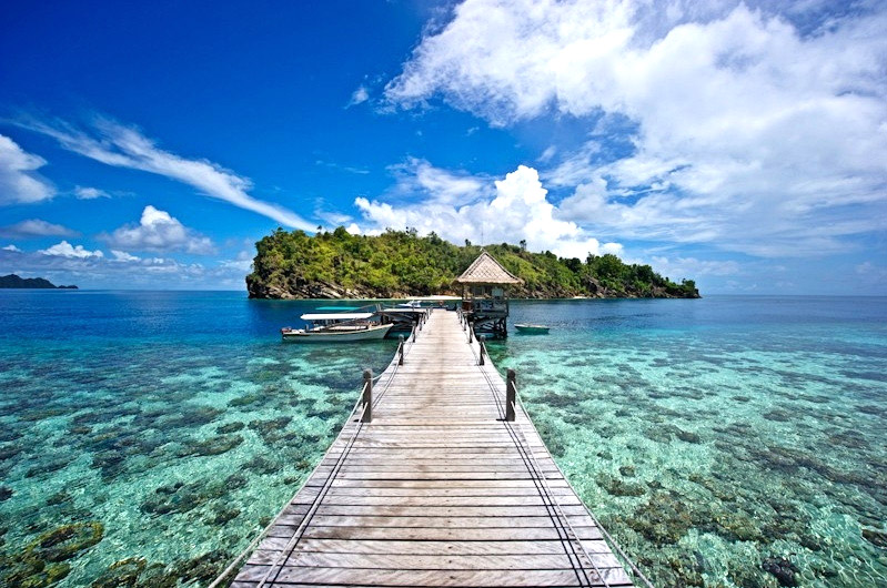 The jetty at Misool Eco Resort juts into a shallow cove at the edge of a reef that teems with stingrays, juvenile sharks, and bumphead parrotfish.