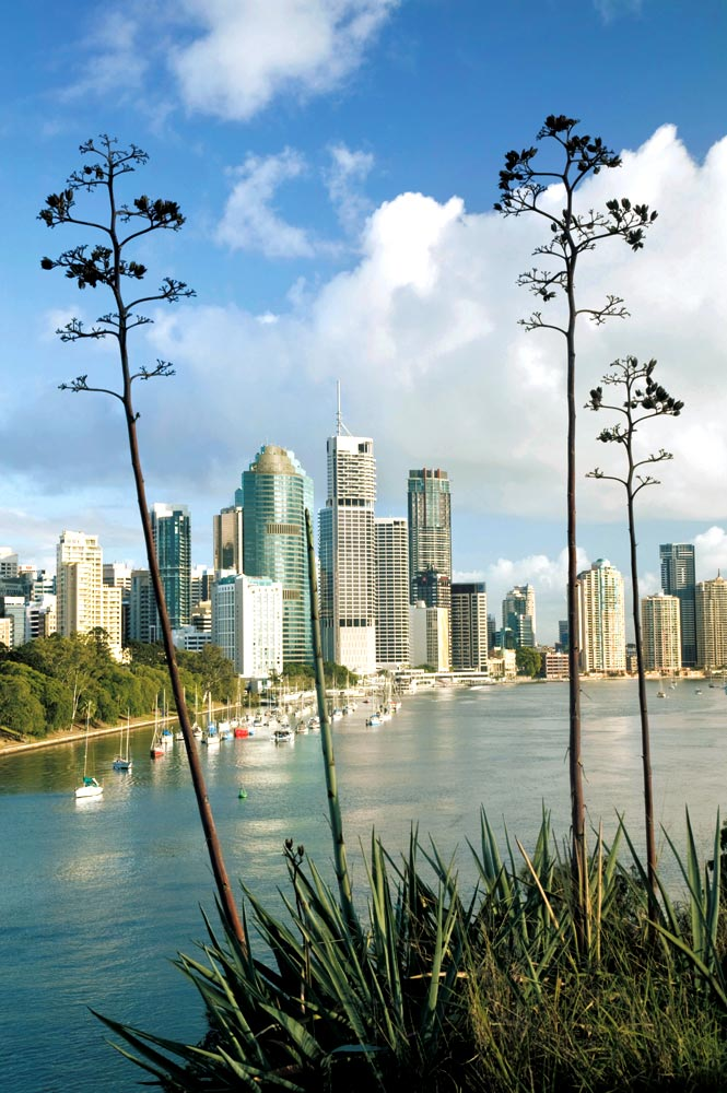 Looking over the Brisbane River to the business district.