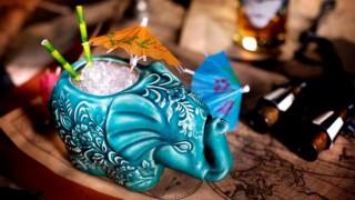 Elephant's Tea Party