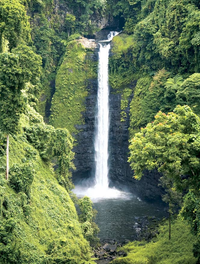 The high islands of Samoa are home to some of the most picturesque waterfalls in the South Pacific, including the 53-meter Sopoaga Falls in eastern Upolu.