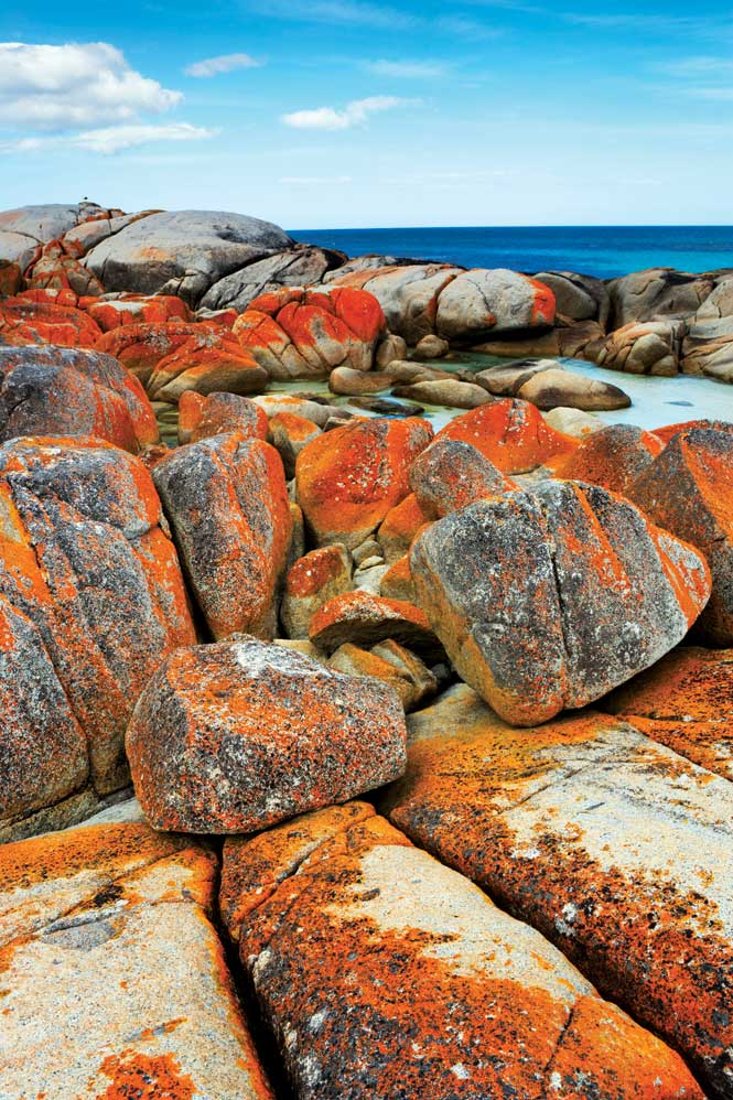 Orange-hued lichen colors the rocks of Tasmania's Bay of Fires.