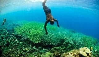 solomon-islands-coral-triangle-day