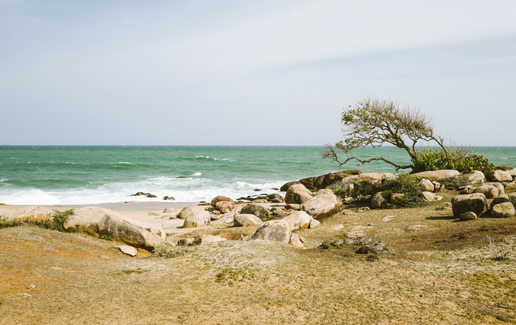 Nestled on the fringes of Yala National Park, Wild Coast Tented Lodge sits on a deserted beach.