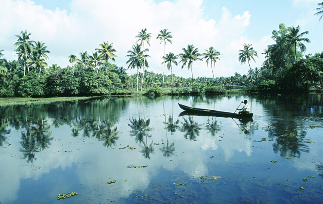 A scenic backwaters lake in Kerala.