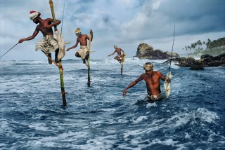 "Steve McCurry's ""Fishermen at Weligama"""