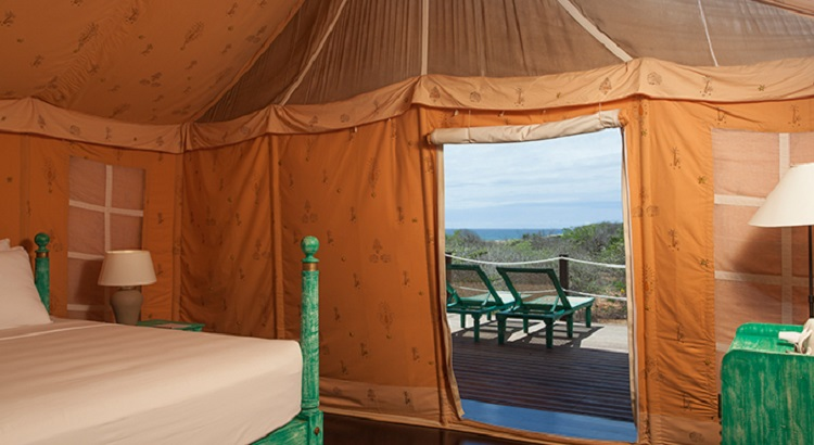 The JEtwing Yala Tented Camp comprises a total of 10 tents.