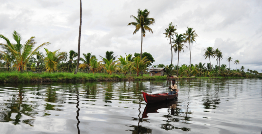 Bhat's tours take you kayaking though the backwaters of Kerala.