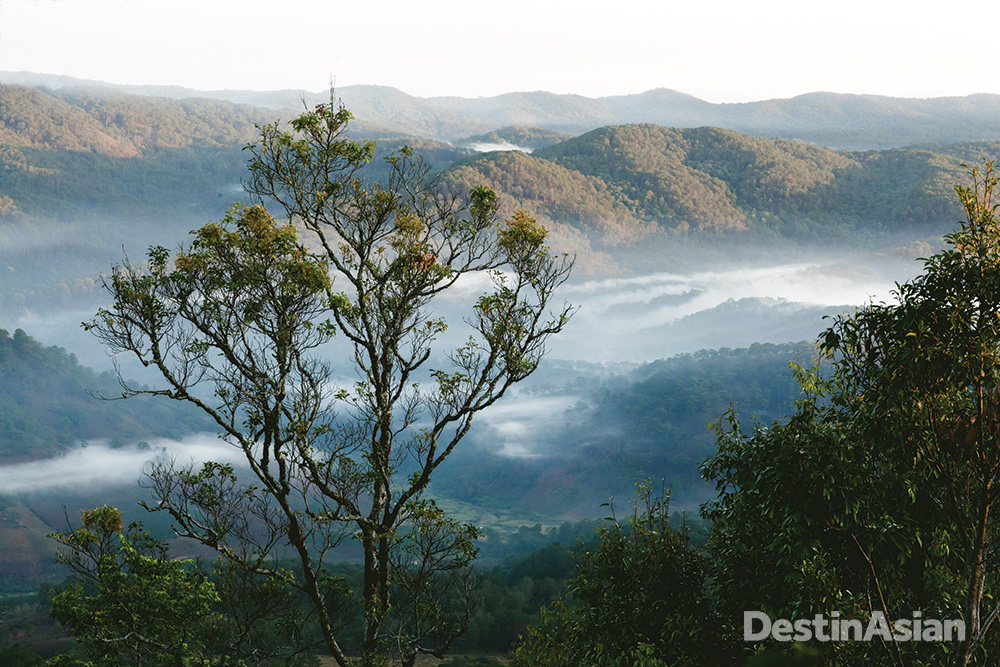 Overlooking the rolling, wooded hills north of Dalat.